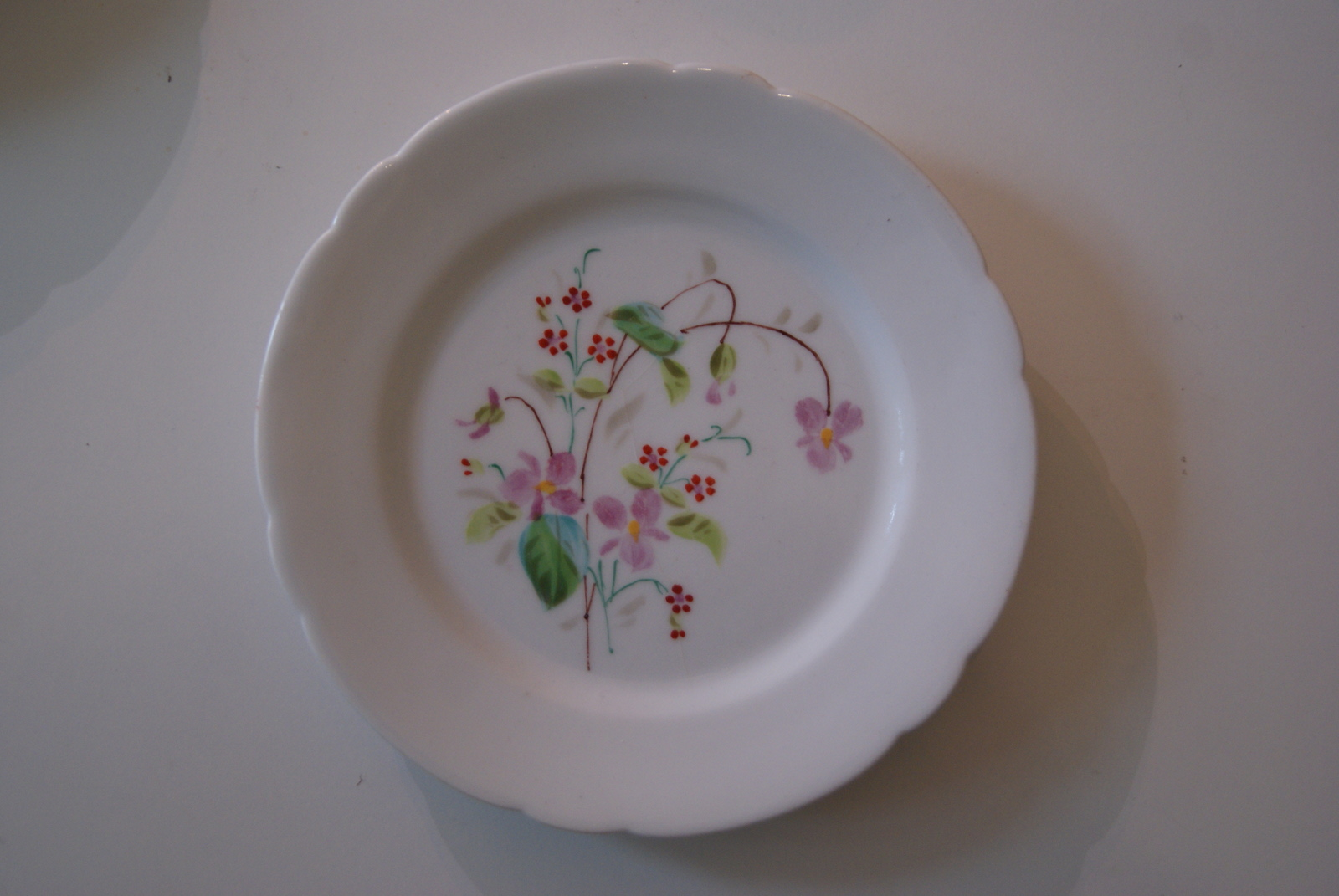Fraureuth plate with flowers, pink and red flowers with leaves