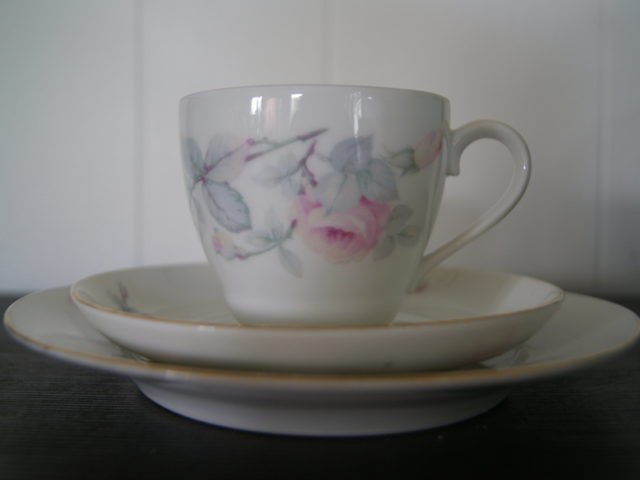 Porsgrund cup with saucer and plate with roses and leaves