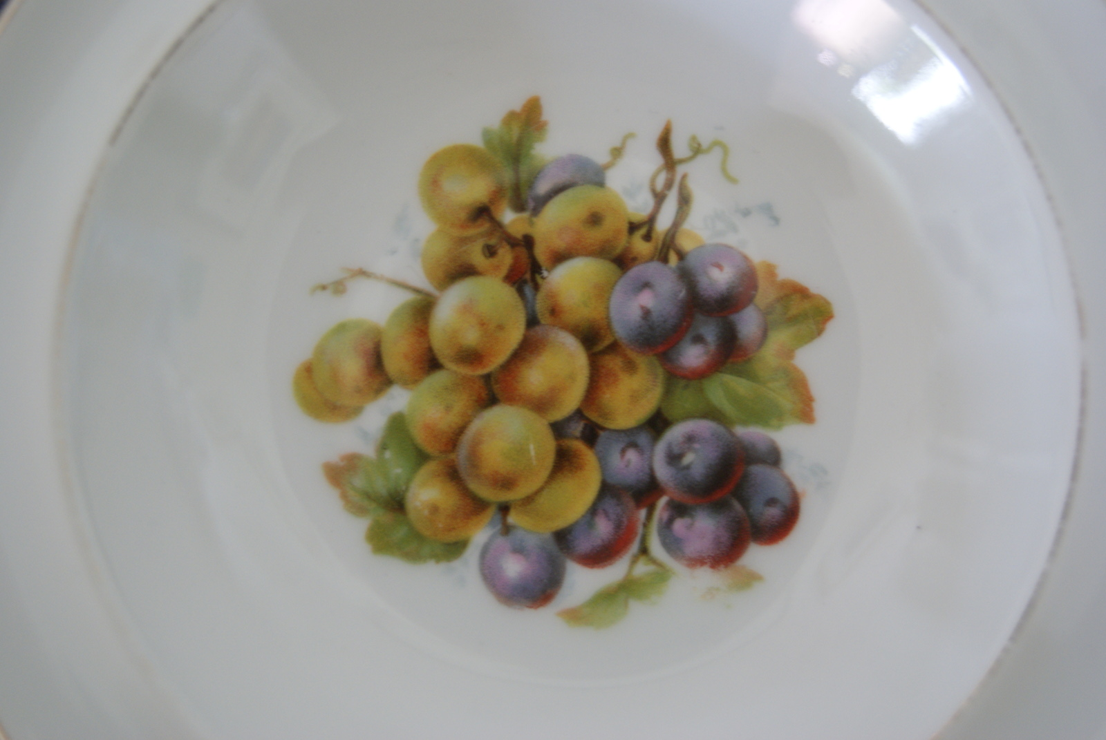 Waldenburg - Altwasser bowl with grapes 1928