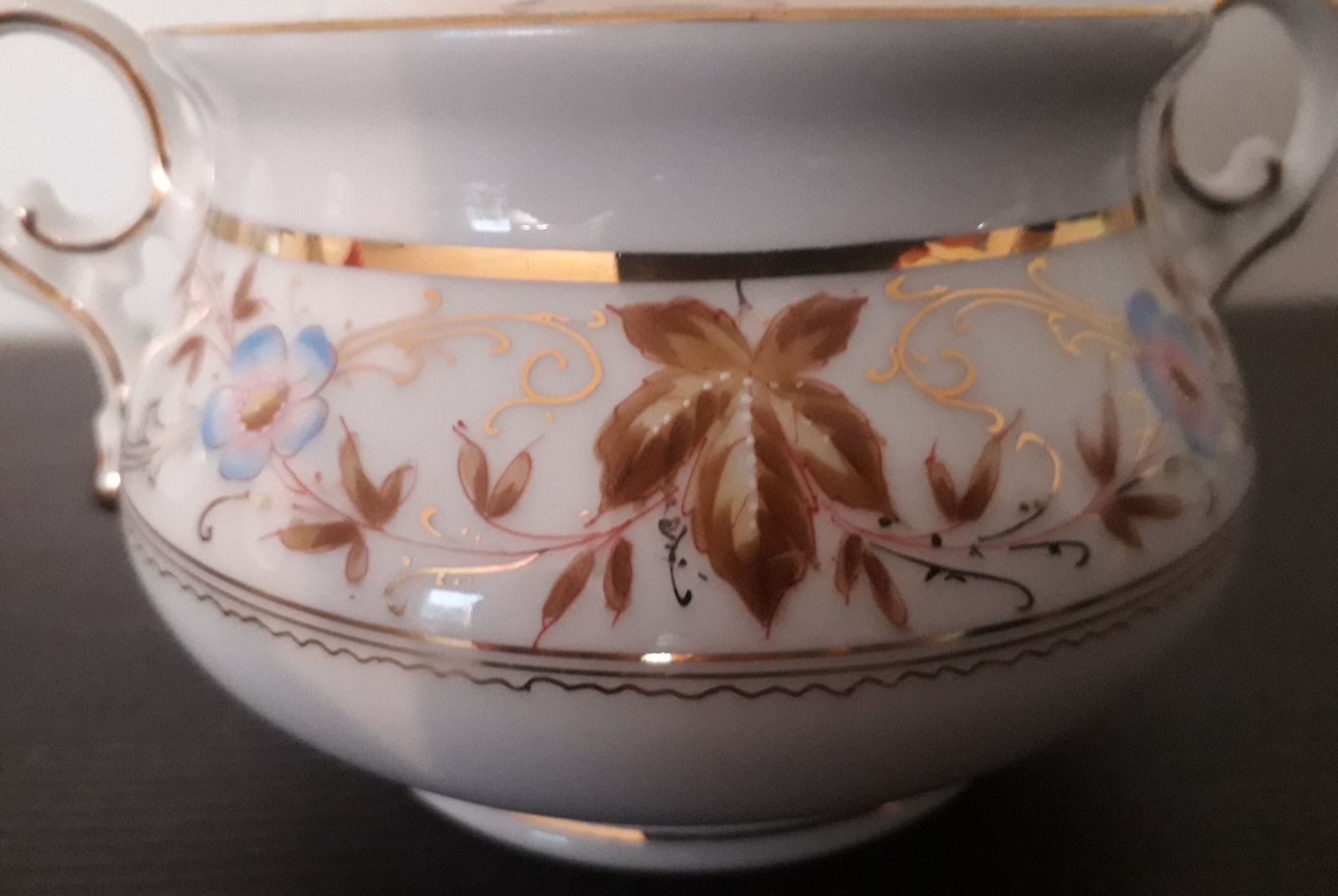 Waldenburg - Altwasser sugar bowl with handpainted flowers and leaves